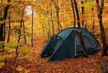 Eskeez Autumn / Things to do when the world turns orange...