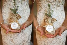Plantas como regalo de invitados, plants wedding favors