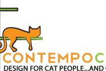 For the kitties / Diy cat