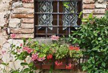 Toscana ♥