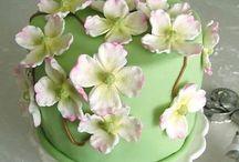 Special cakes / Hemelse heerlijkheden