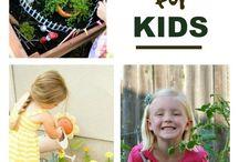 AA Kids' Gardens