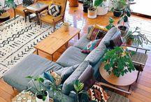 interior & indoor Plants