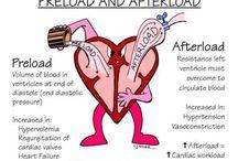 Anestesisykepleie