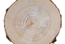 Lovely Wood / Magical Structures in Different Types of Natural and Manufactured Wood.