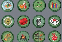 Scouts insignias