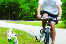 Cycling with your dog  / Cycling with your dog made easy with the Springer Bike Attachment!   Exercise is just important for them as for us, so why not grab your wheels, set up the bike attachment and head out with your best friend!