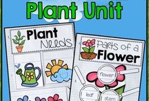 grade 3 science plants