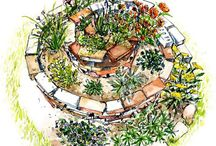 Gardening & other Outdoor places / by Susan Swanson