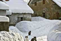 Winterwelt   ⛄❄️ ⛄