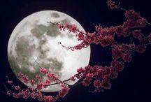 The magic of Moon