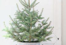 Un Noël scandinave... / Sapin - déco - cadeaux et gourmandises