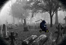 Cemetery / Cemetery