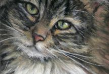 cats and more cats / by Judy McCarty