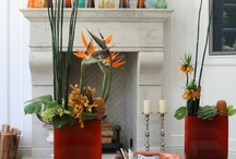 Flowers For the Home / A look at fresh floral designs for your home, by Bloomster's. / by Bloomster's