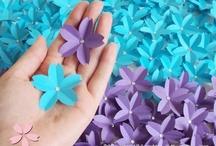Azul e lilás / Azul representa o Quita e Lilás, a Buna
