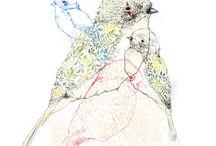 Animals / Beautiful birds & hares &