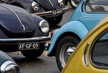 Beetle / Volkswagen