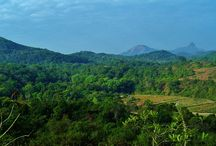 """Ettina Bhuja Trekking / An 8 Kms drive from Mekanagadde Homestay. We can find a historic very old temple """"Nanyada Bhairaveshwara Temple"""" and next to it is the gigantic Shishila Gudda (Ettina Bhuja) hill. This is the most wonderful place and is probably the only one of its kind, in the whole surroundings of Chikmagalur, Mudigere and Sakleshpur. Ettina Bhuja is one of the best trekkers favorite trekking spots in Karnataka. In rainy season this place gets heavy rain fall."""