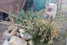 Leden a únor ve vysněné zahradě / Brrr, to je zima. A my stejně chodíme do naší zahrady, podívejte se, co nás tam láká.