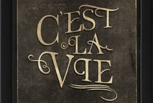 French-The Language And Lifestyle