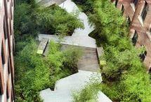 foisonnement vegetation urbain