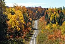 Wonderful fall