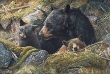 Wildlife Paintings - Canvas Reproductions For Sale / Wildlife Print Reproductions Available for sale