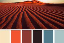 ¤ color palette ¤