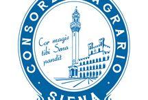 Lisssina