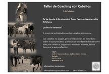 Taller de coaching asistido con caballos