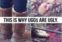 animals  cruelties