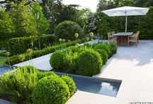 Water features / Water features and ponds by Charlotte Rowe Garden Design