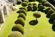 jardines de sueño