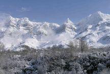 Location / Οι πηγές μας βρίσκονται σε υψόμετρο 1.450μ. Θαυμάστε τη φύση!