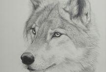 Lobos & Outros