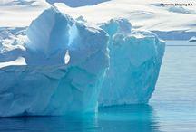 In viaggio tra i ghiacci / Osservare meravigliati l'aurora boreale, solcare la neve su una slitta trainata dai cani, fare una crociera-spedizione tra gli orsi polari. In Artico e Antartico, dove lo spazio è un'immensa distesa bianca.