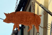 Robin Rea's Rusty Pig in Ottery St Mary / Great dining experiences and fanastic butcher's to boot!