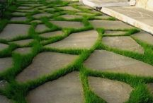 Сад. Дорожки