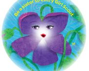 Daisies Vi Petal - Be a Sister to Every Girl Scout / by Girl Scouts SU24