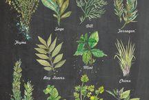 tatuagem botânica