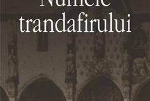 Books Worth Reading / Gabriel Garcia Marquez - Dragoste in vremea holerei Haruki Murakami - La sud de granita, la vest de soare Ernest Hemingway - Batranul si marea