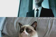 Grumppy Cat :))