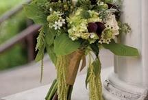flowers / by Linda Boardman
