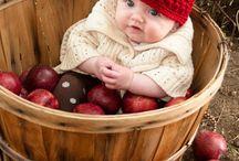 őszi baba