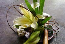+ Art floral +