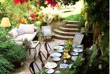 backyard / front yard  / by Alexia