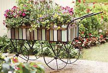 garden ideas / by Kellyanceli Adams
