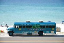 Beach Party Bus / by C J