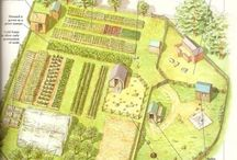 The living permaculture dream farm